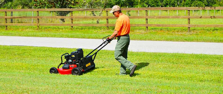 Team member performing mowing service for a homeowner in Plant City.