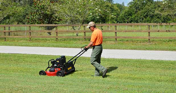 About ProCare Lawn Maintenance